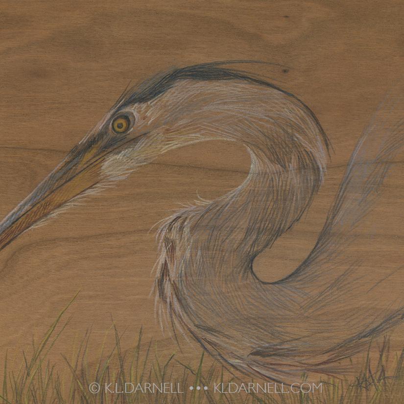 Colored pencil drawing of a heron drawn on wood veneer