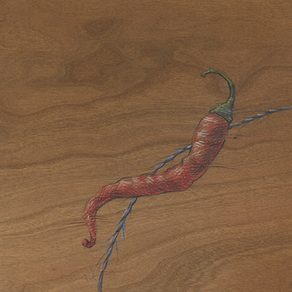 Colored pencil drawing on wood of a red pepper and blue string